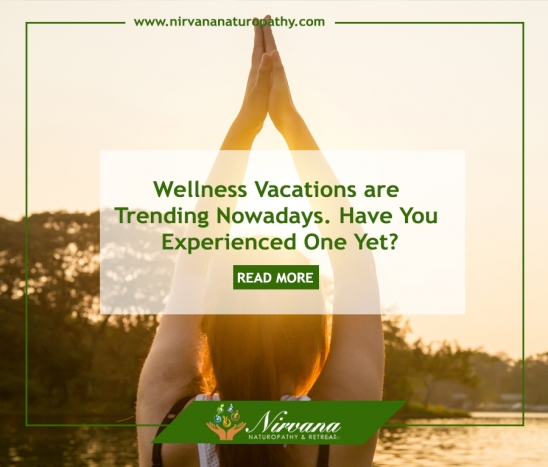 Wellness Vacations are Trending Nowadays. Have You Experienced One Yet?
