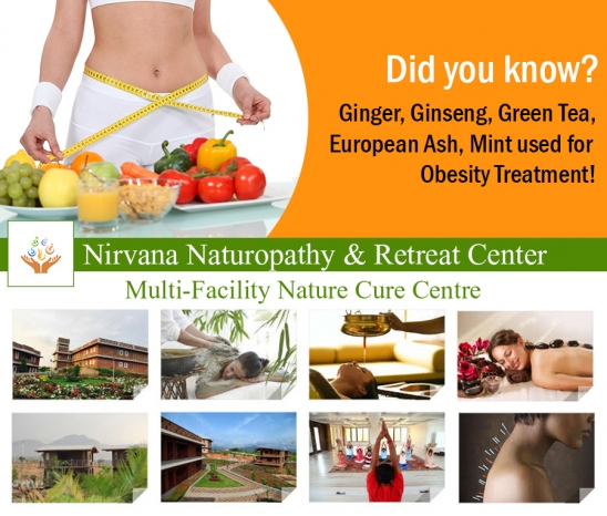 Naturopathy Treatment for Weight Loss– Herbs Used for Obesity Treatment