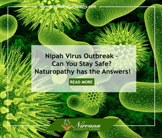 Nipah Virus Outbreak – Can You Stay Safe? Naturopathy has the Answers!